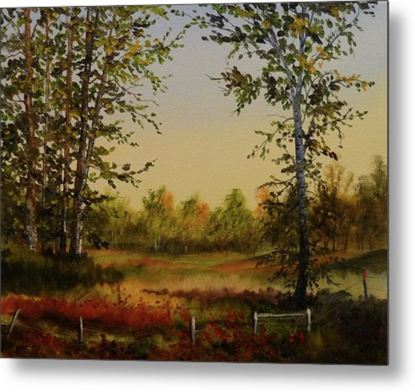 Fields And Trees Metal Print