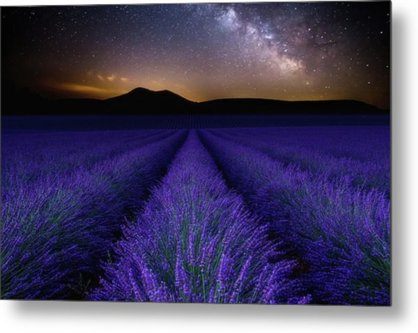 Fields Of Eden Metal Print