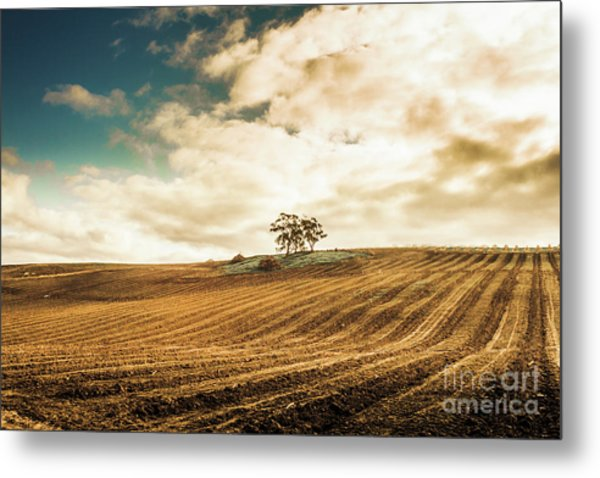 Fields Of Tasmanian Agriculture Metal Print