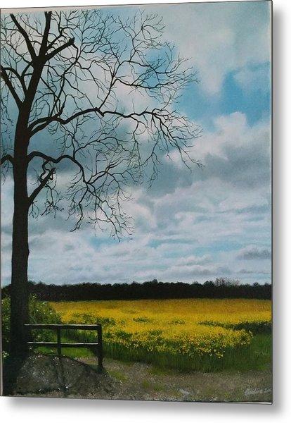 Fields Of Yellow Metal Print