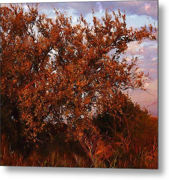Fiery Elm Tree  Metal Print