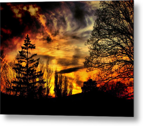 Fiery Forest Sunset Metal Print