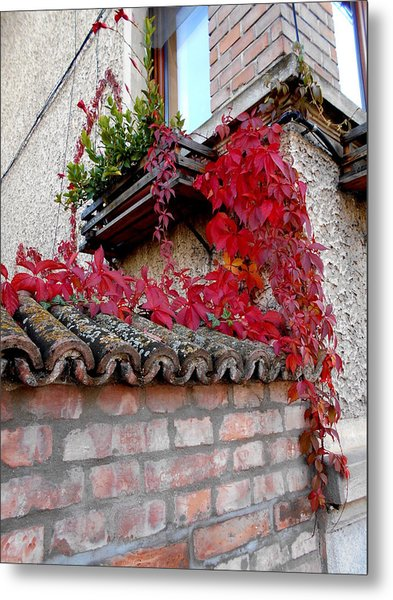 Fifty Shades Of Autumn - 12. Metal Print