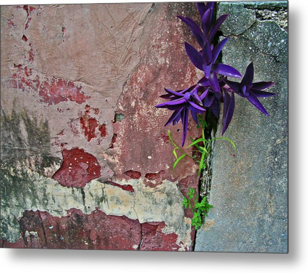 Finding Beauty Everywhere Metal Print