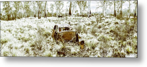 Fine Art Tasmania Bushland Metal Print