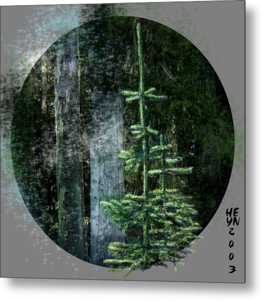 Fir Trees - 3 Ages Metal Print