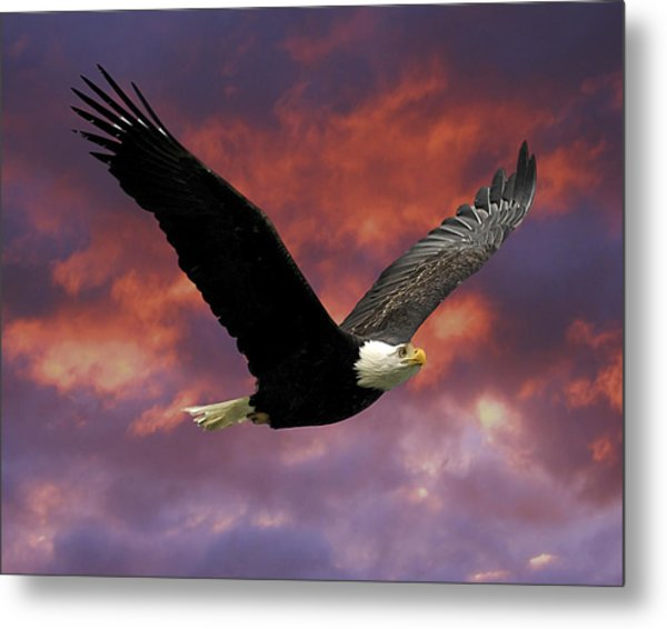 Fire Cloud And Eagle Metal Print