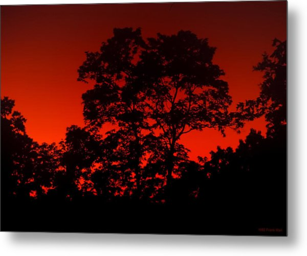 Fire In The Sky Metal Print by Frank Mari