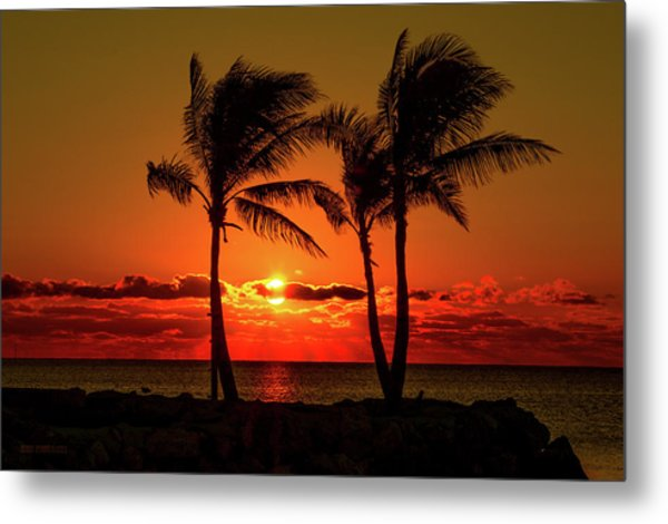 Fire Sunset Through Palms Metal Print