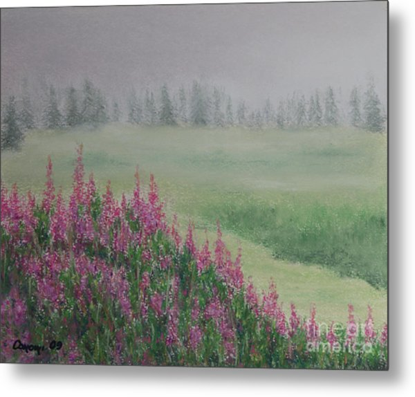 Fireweeds Still In The Mist Metal Print