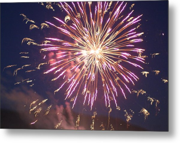 Fireworks In The Park 2 Metal Print