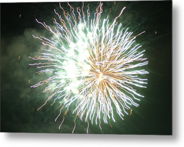 Fireworks In The Park 4 Metal Print