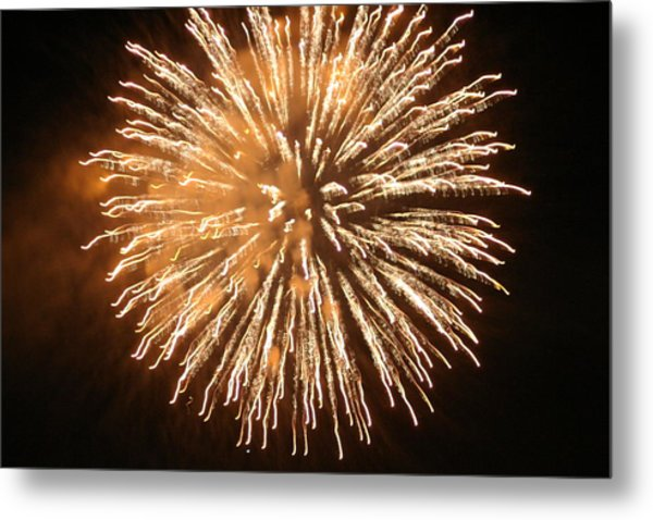 Fireworks In The Park 5 Metal Print