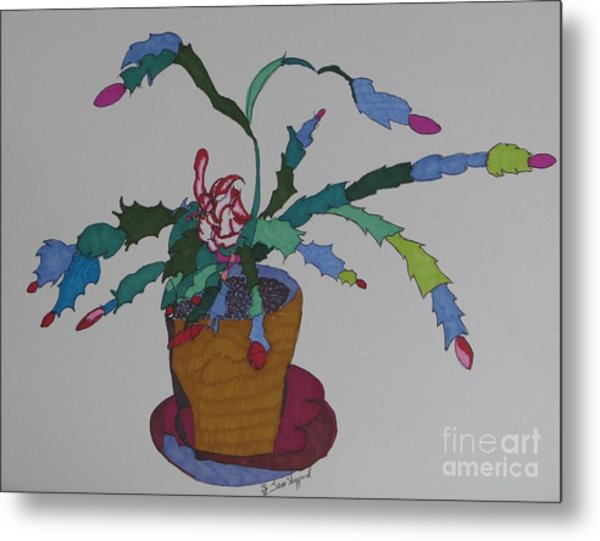 First Bloom Christmas Cactus Metal Print by James SheppardIII