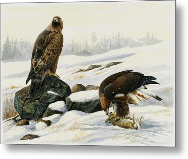 First Catch Metal Print by Dag Peterson
