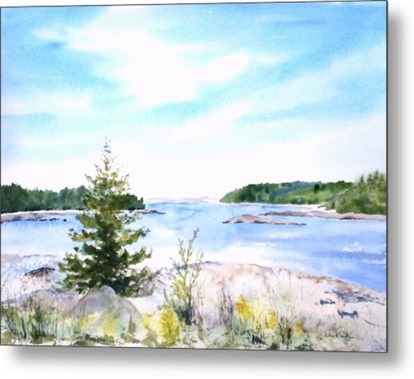First Impressions, Maine Metal Print