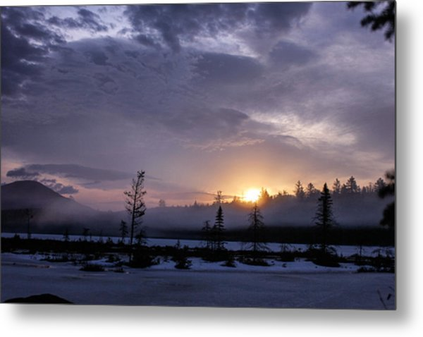 Metal Print featuring the photograph First Light At Wolf Pond by Jessica Tabora