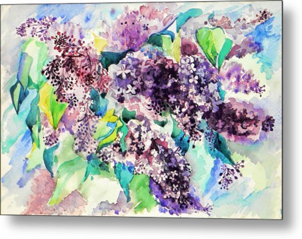 First Lilac. Metal Print by Anastasia Michaels