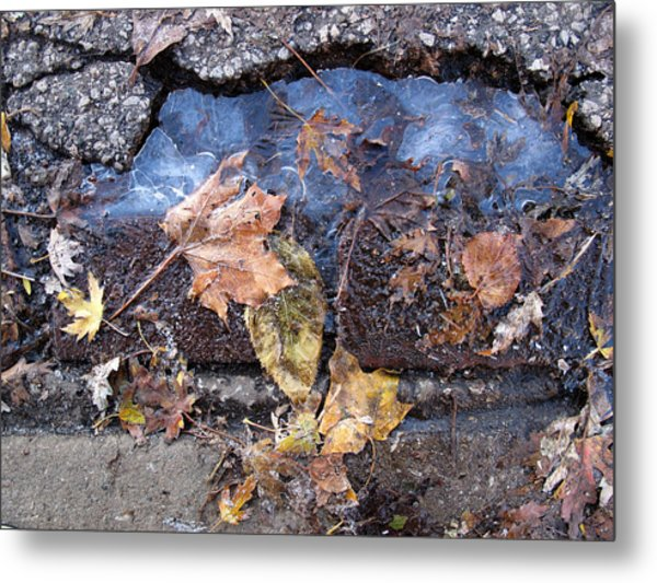 First Morning Of Ice In Fall 2  Metal Print by Lyle Crump