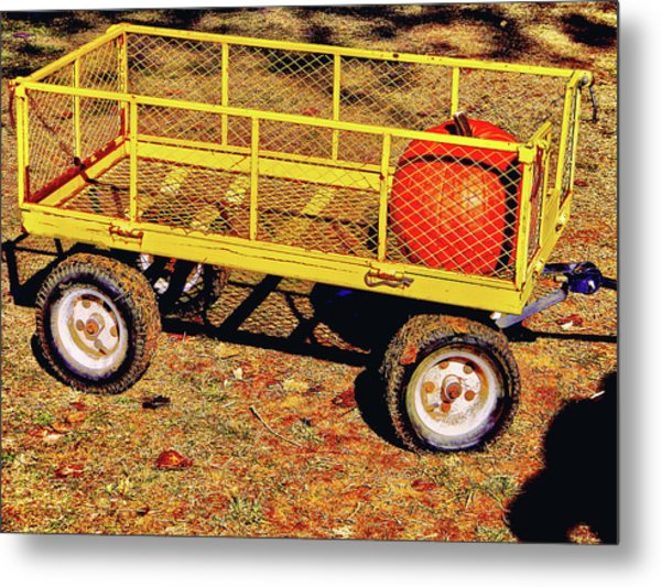 Metal Print featuring the photograph First Pick by Pacific Northwest Imagery