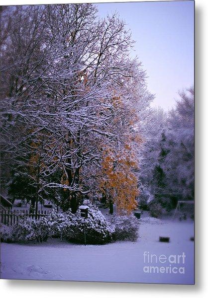First Snow After Autumn Metal Print