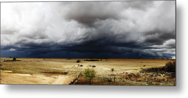 First Spring Rain Metal Print by Hendrik Maree