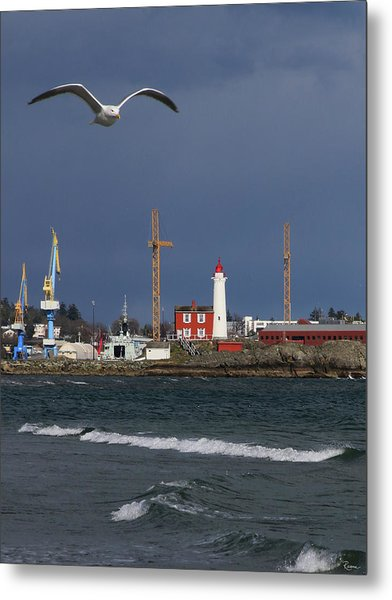Metal Print featuring the photograph Fisgard Photobomber by Rasma Bertz