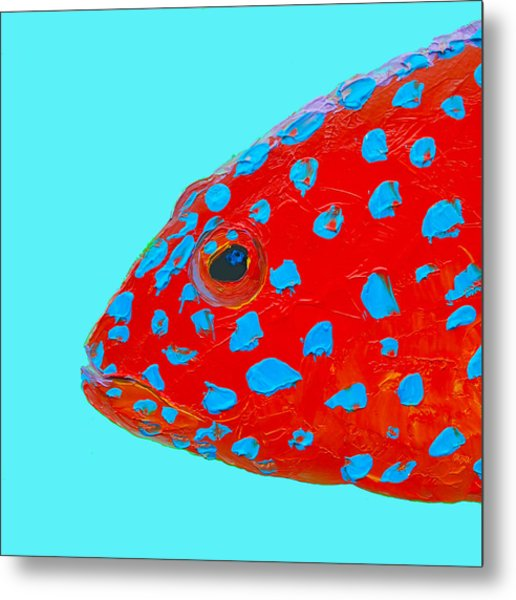 Fish Art - Strawberry Grouper Metal Print