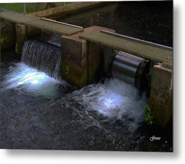 Fish Hatchery At Bennett Springs Metal Print