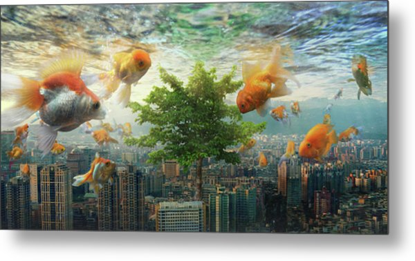 Fish Tank Metal Print by Andrew Kow