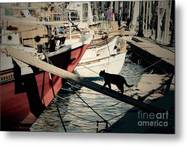 Fisherman's Cat  Metal Print