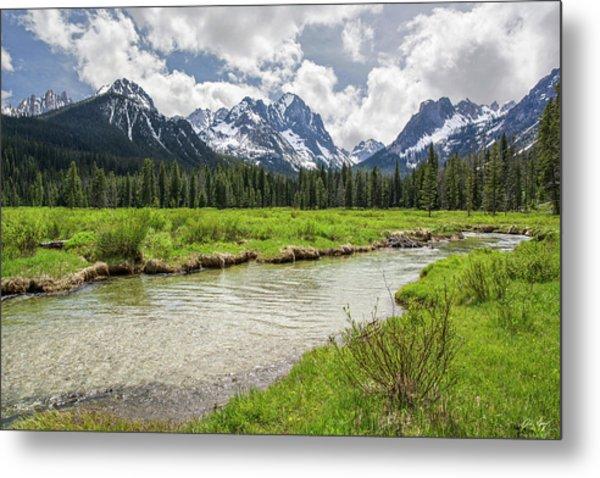 Fishhook Creek Meadow Metal Print