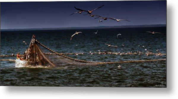 Fishing For Menhaden On The Chesapeake Bay Metal Print