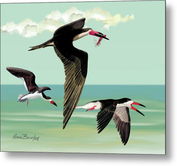 Fishing In The Gulf Metal Print