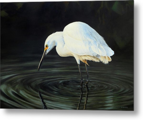 Fishing The Shadows Metal Print