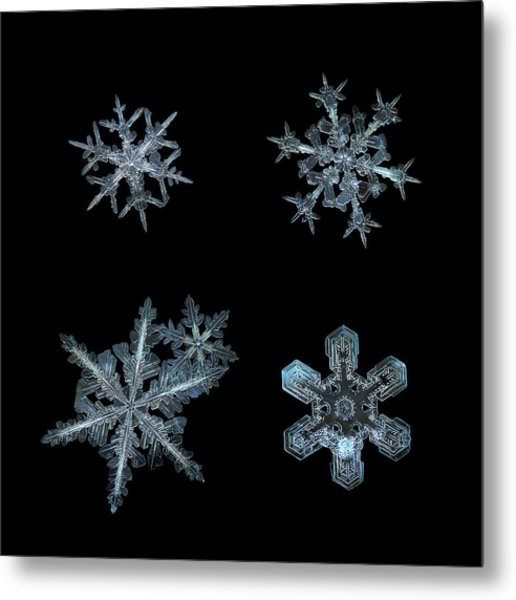 Five Snowflakes On Black 3 Metal Print