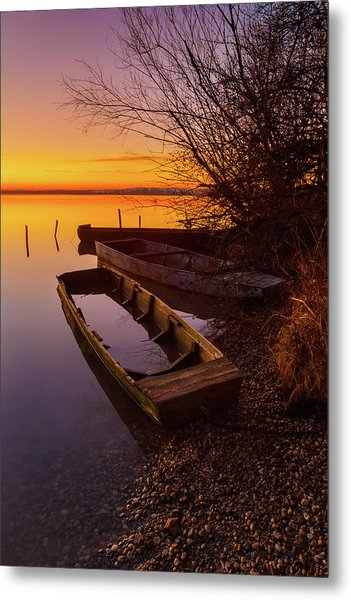 Metal Print featuring the photograph Flame Of Dawn by Davor Zerjav