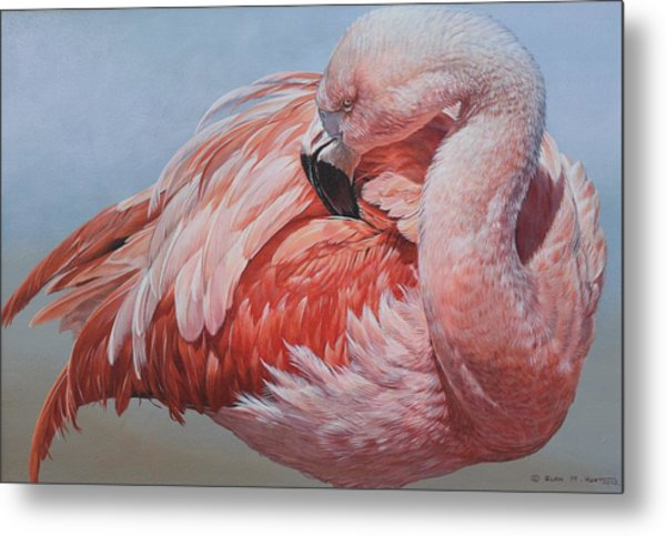 Metal Print featuring the painting Flamingo Preening by Alan M Hunt