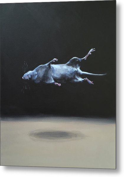 Floating Field Mouse Metal Print