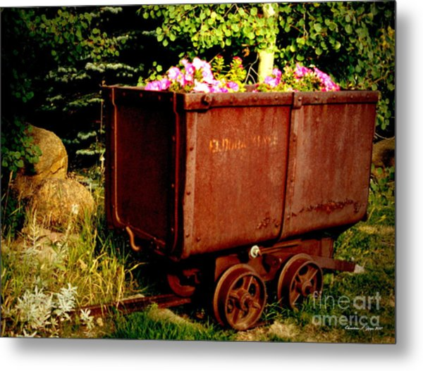 Fleurs In Rustic Ore Car Metal Print by Christine S Zipps