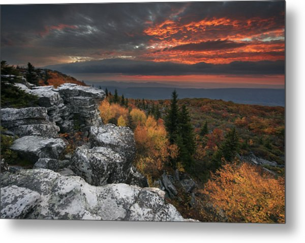 Flight Of Fantasy Metal Print