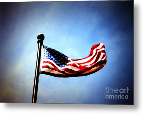 Flight Of Freedom Metal Print