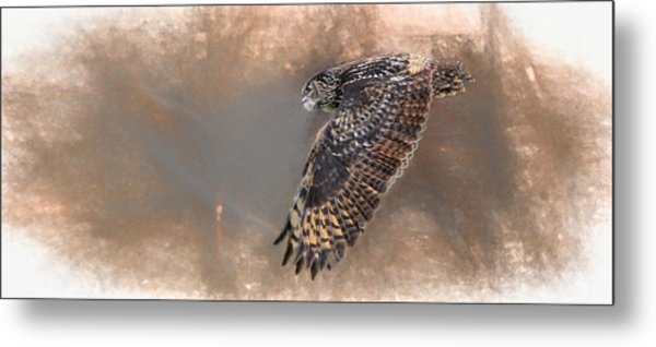 Flight Of The Eagle Owl Metal Print