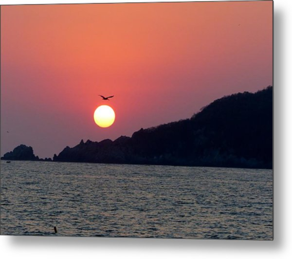Flight Over The Sun Metal Print