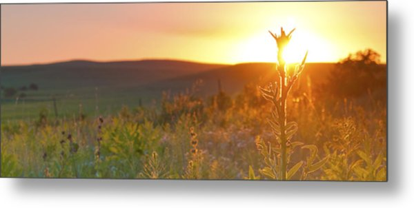Flint Hills Sunset Metal Print