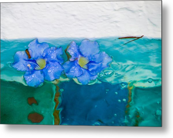Floaters Metal Print