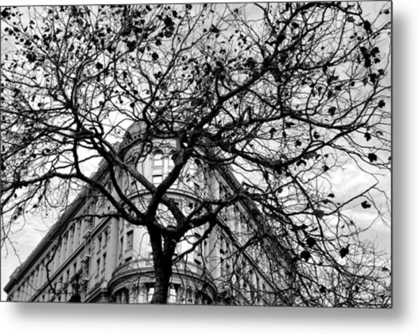 Flood Building - San Francisco - Corner Tree View Black And White Metal Print