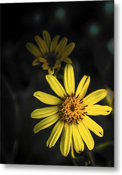 Flora In Yellow Metal Print