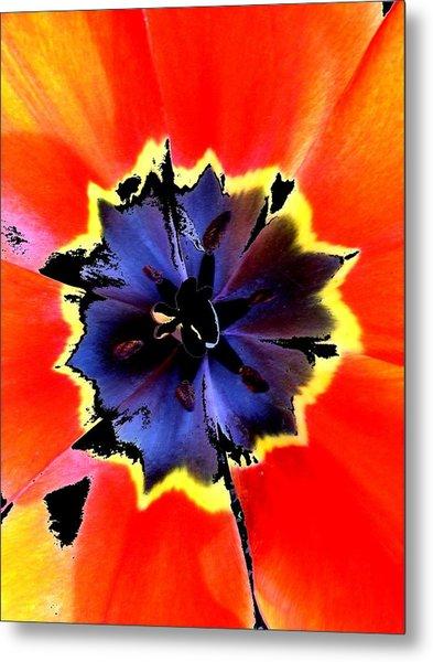 Floral 1229 Metal Print by Chuck Landskroner