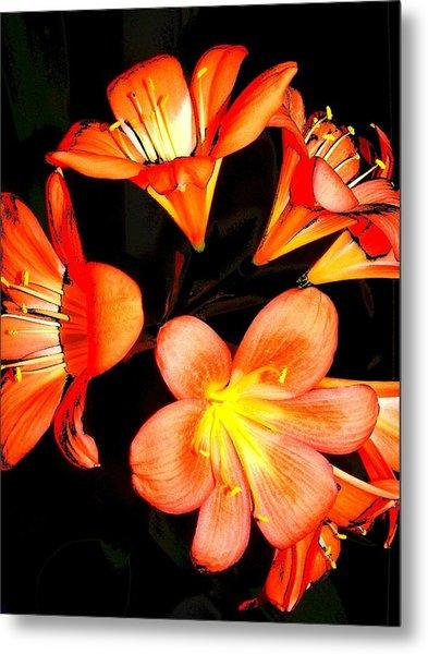 Floral 6019 Metal Print by Chuck Landskroner